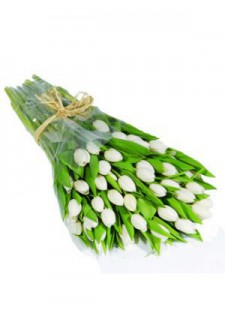 Большой букет белых тюльпанов